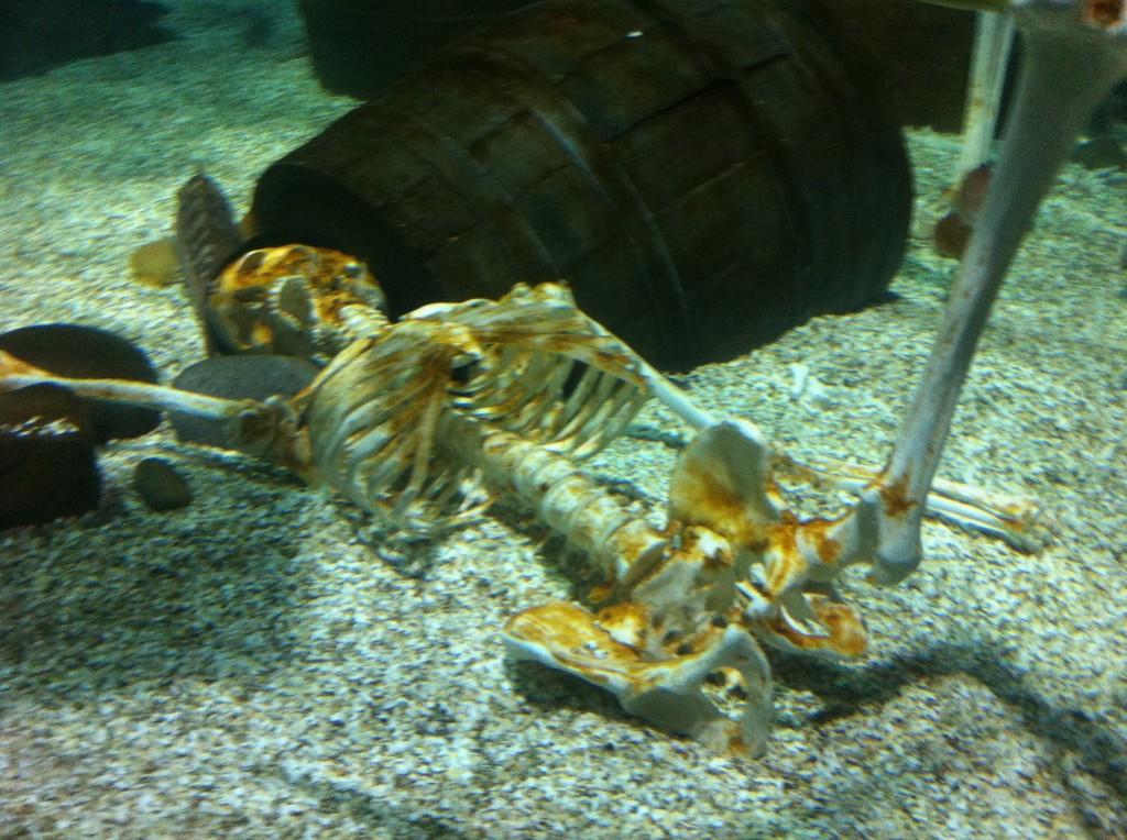 Skeleton under the sea