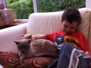 Relaxing with the cats