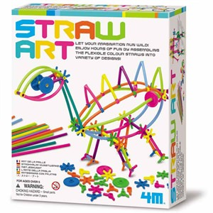 Create Your Own Straw Art Kit