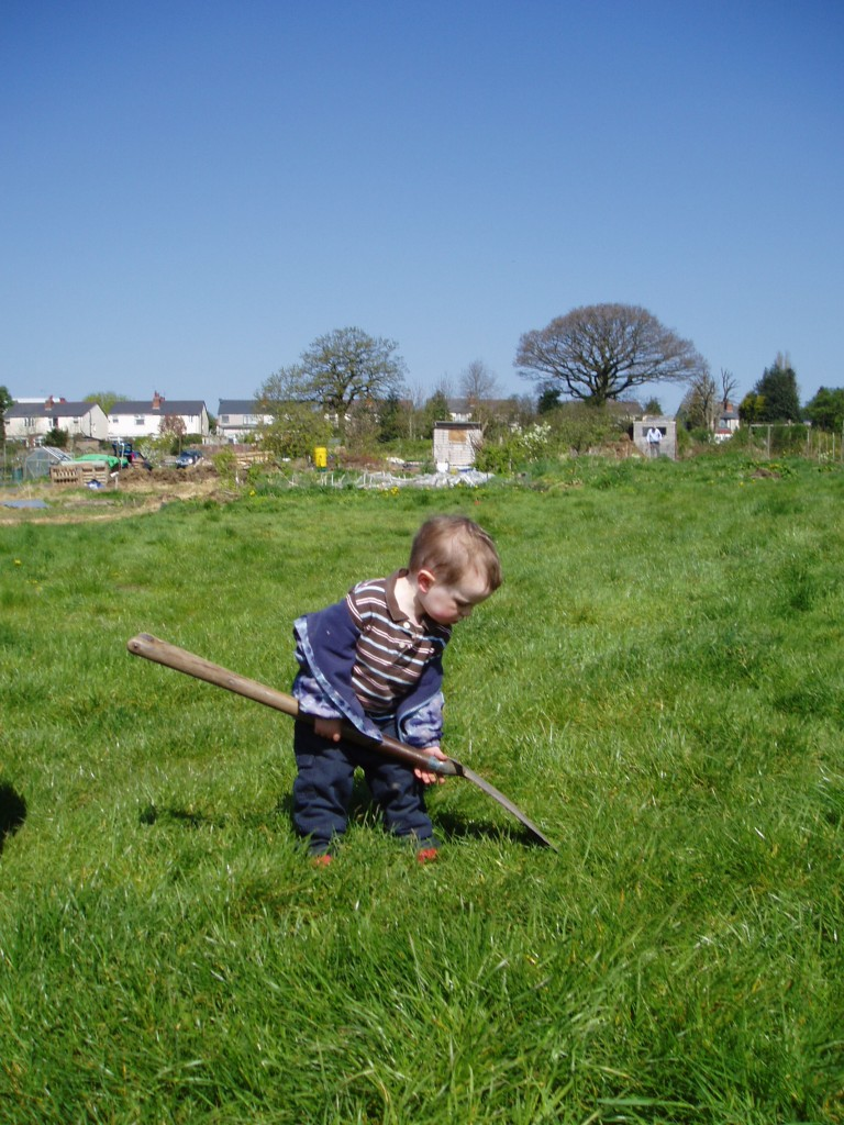 Child working at the allotment
