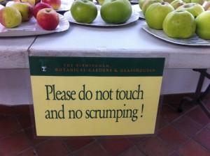 No Scrumping