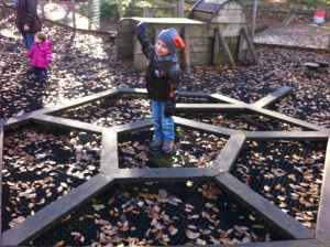 Playground at the Wyre Forest