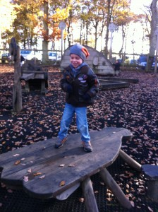 Playground at Wyre Forest