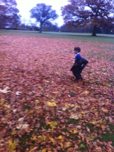 scrunching through leaves