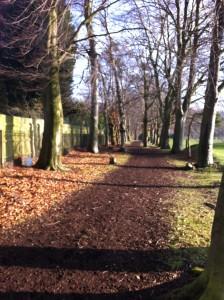 walk near rugby training