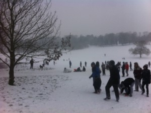 Sledging in the park