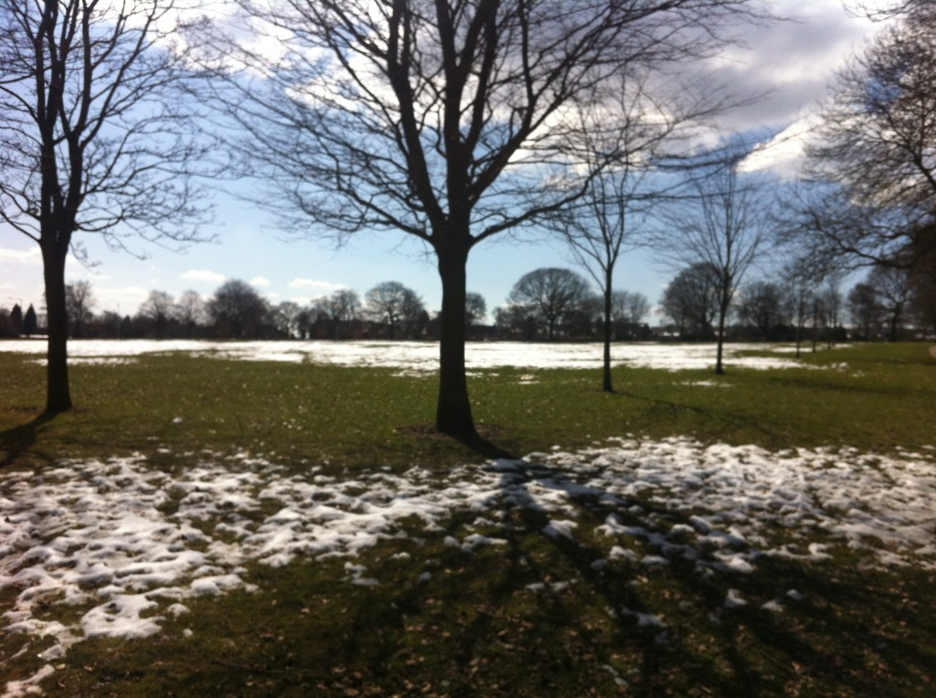 Park with Snowy Patches