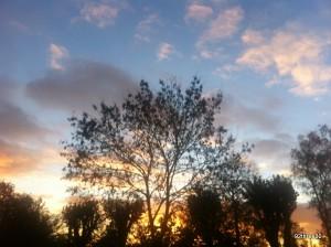 sun coming up