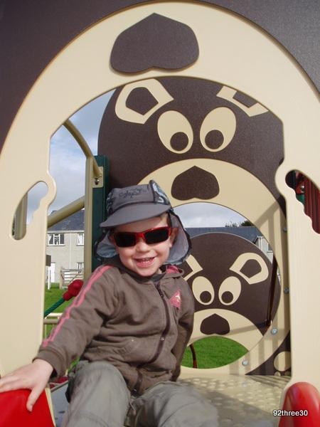 Dyffryn Ardudwy bear climbing frame