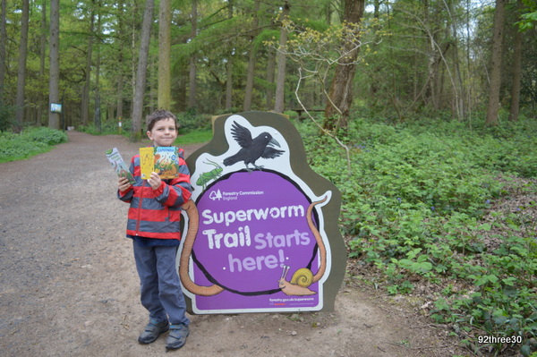 superworm trail wyre forest