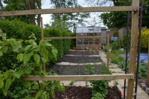 Garden Vegetable Growing