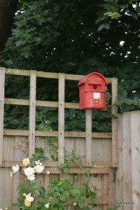 post box nest box