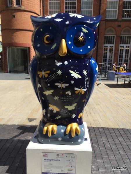 ikon gallery owl