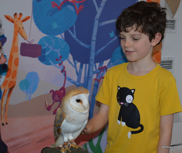 child with an owl