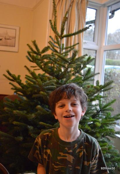 Christmas tree before decoration