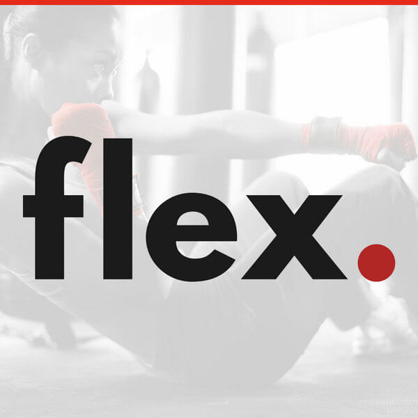 flex logo picture