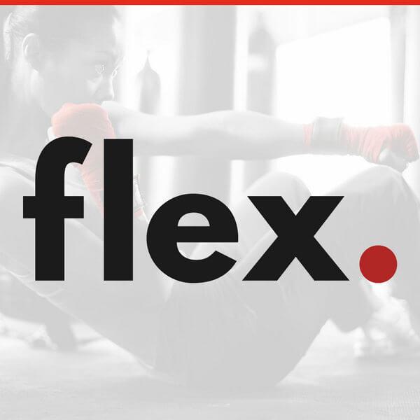 flex logo picture