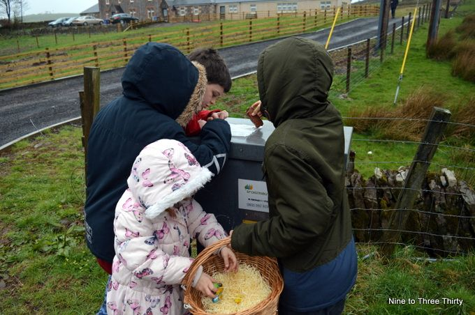 hunting for easter eggs in the rain