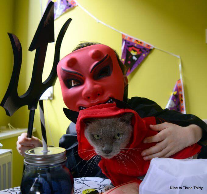 cat costume for halloween
