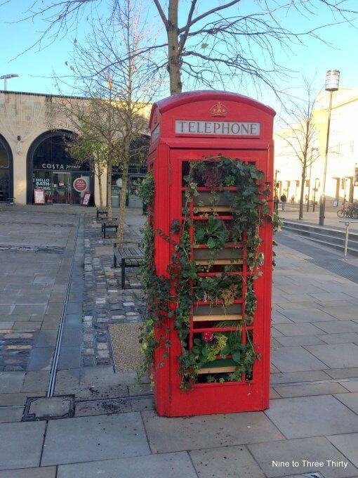 red Phone box with plants