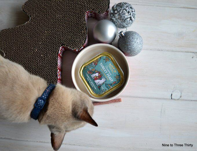 what not to feed your cat at christmas