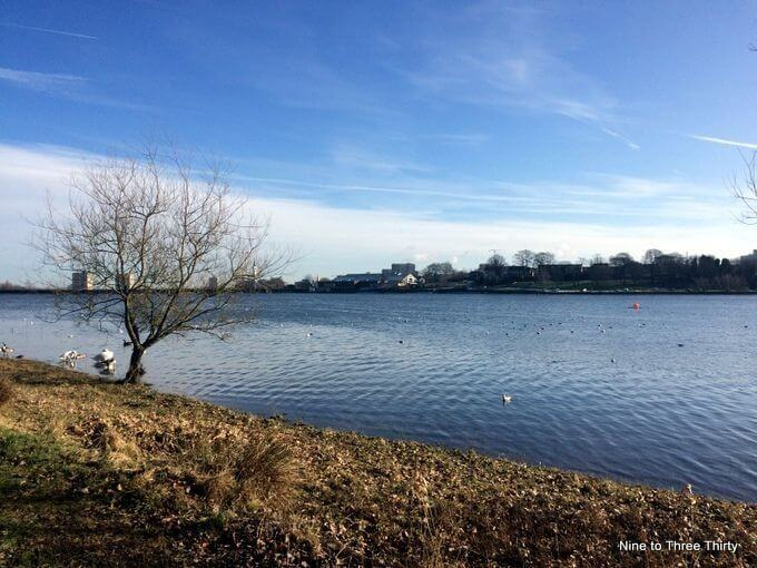 edgbaston reservoir winter