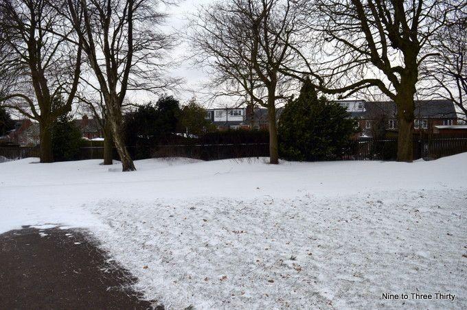 snow drifting