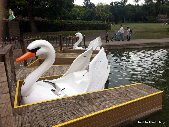swan boats at cannon hill park