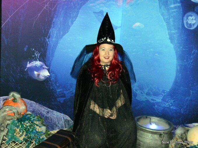 witch meet and greet