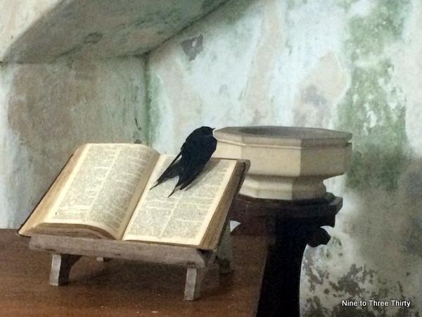 swift in church