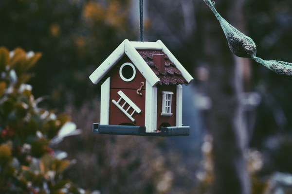 wooden hanging bird house