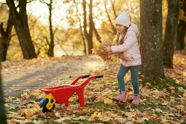 girl with wheelbarrow and autumn leaves